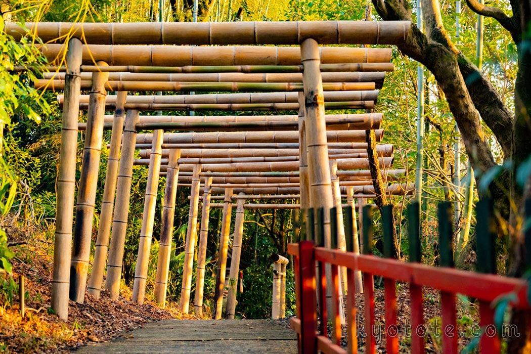 伏見稲荷の竹の鳥居