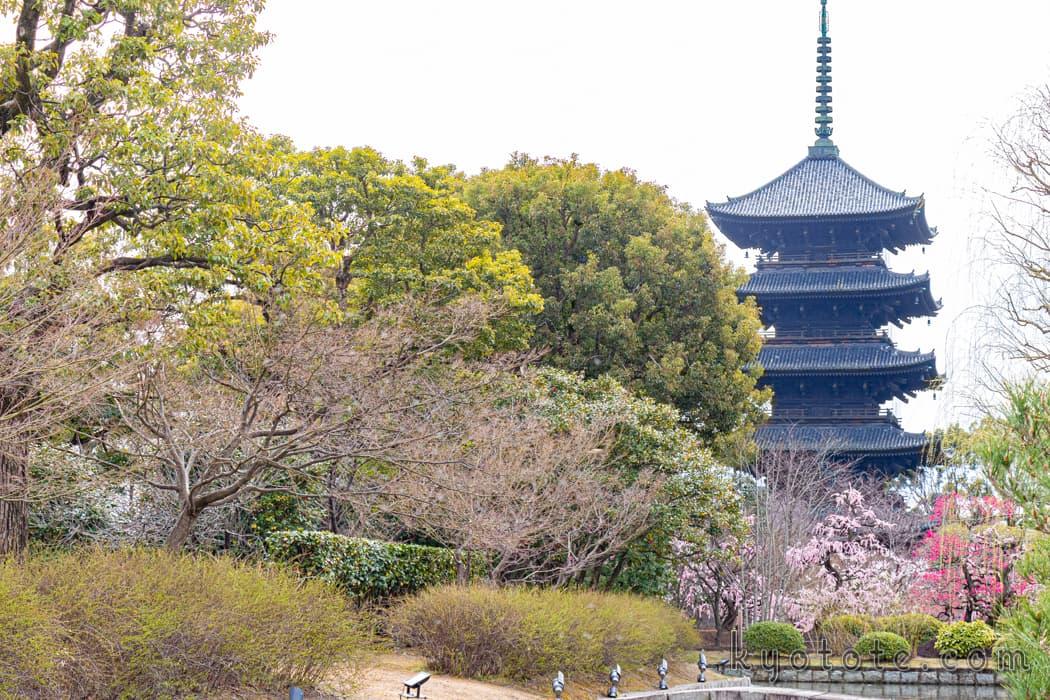 国宝に指定されている東寺の五重塔